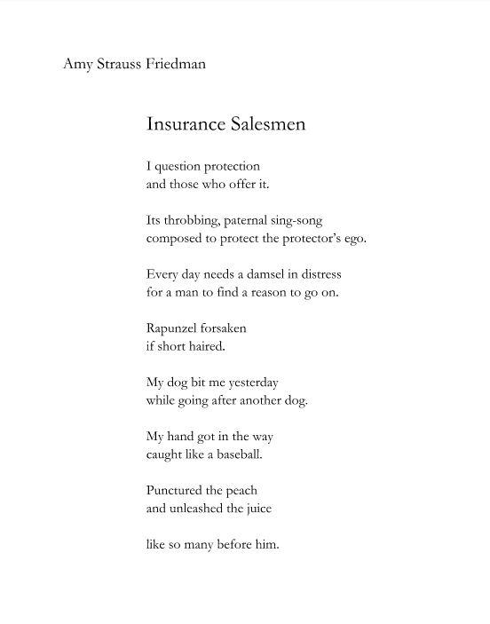 Amy Strauss Friedman-Insurance Salesman